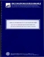 Báo cáo tài chính hợp nhất năm 2012 (đã kiểm toán) - Công ty Cổ phần Đầu tư và Xây dựng Bưu điện