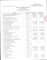 Báo cáo tài chính quý 3 năm 2009 - CTCP Đầu tư Điện lực 3