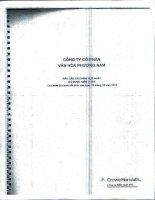 Báo cáo tài chính hợp nhất năm 2011 (đã kiểm toán) - Công ty Cổ phần Văn hóa Phương Nam