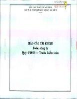 Báo cáo tài chính quý 4 năm 2013 - Công ty Cổ phần Dịch vụ Kỹ thuật Điện lực Dầu khí Việt Nam