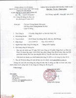 Báo cáo tài chính quý 4 năm 2015 - Công ty Cổ phần Cảng dịch vụ Dầu khí Đình Vũ