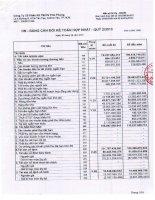 Báo cáo tài chính hợp nhất quý 2 năm 2013 - Công ty Cổ phần Sản xuất Thương mại Dịch vụ Phú Phong