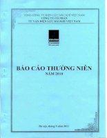 Báo cáo thường niên năm 2010 - Công ty cổ phần Tư vấn Điện lực Dầu khí Việt Nam