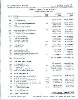 Báo cáo tài chính hợp nhất quý 1 năm 2010 - Công ty cổ phần Cao su Phước Hòa