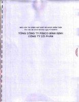Báo cáo tài chính hợp nhất năm 2014 (đã kiểm toán) - Tổng công ty Pisico Bình Định - CTCP