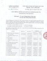 Báo cáo tài chính năm 2015 (đã kiểm toán) - CTCP Đầu tư Điện lực 3