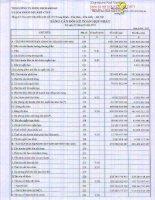 Báo cáo tài chính hợp nhất quý 1 năm 2013 - Tổng Công ty Dung dịch khoan và Hóa phẩm Dầu khí-CTCP