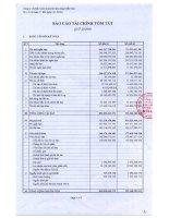 Báo cáo tài chính quý 3 năm 2008 - Công ty Cổ phần Kinh doanh Khí hóa lỏng Miền Nam