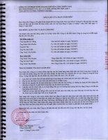 Báo cáo tài chính năm 2007 (đã kiểm toán) - Công ty Cổ phần Kinh doanh Khí hóa lỏng Miền Nam
