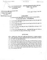 Nghị quyết Hội đồng Quản trị ngày 18-11-2009 - Công ty cổ phần Xây dựng Phục Hưng Holdings