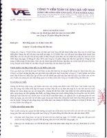Báo cáo tài chính hợp nhất năm 2009 (đã kiểm toán) - Công ty Cổ phần Hồng Hà Việt Nam