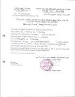 Báo cáo tài chính quý 1 năm 2013 - CTCP Đầu tư Điện lực 3