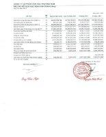 Báo cáo KQKD công ty mẹ quý 3 năm 2012 - Công ty Cổ phần Văn hóa Phương Nam