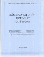 Báo cáo tài chính hợp nhất quý 2 năm 2011 - Tổng Công ty Dung dịch khoan và Hóa phẩm Dầu khí-CTCP