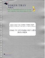 Báo cáo tài chính năm 2014 (đã kiểm toán) - Công ty cổ phần Viễn thông TELVINA Việt Nam