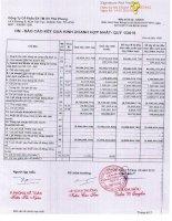 Báo cáo tài chính hợp nhất quý 1 năm 2015 - Công ty Cổ phần Sản xuất Thương mại Dịch vụ Phú Phong
