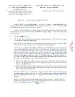 Báo cáo tài chính năm 2012 (đã kiểm toán) - Công ty cổ phần Bọc ống Dầu khí Việt Nam
