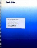 Báo cáo tài chính năm 2015 (đã kiểm toán) - Công ty cổ phần Đầu tư PV2