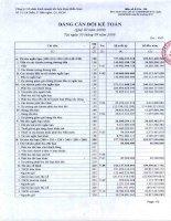 Báo cáo tài chính quý 3 năm 2009 - Công ty Cổ phần Kinh doanh Khí hóa lỏng Miền Nam
