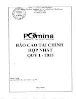 Báo cáo tài chính hợp nhất quý 1 năm 2015 - Công ty Cổ phần Thép Pomina