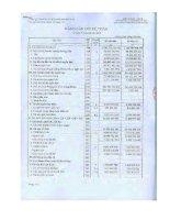 Báo cáo tài chính quý 3 năm 2012 - Công ty cổ phần chứng khoán Phương Nam