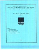 Báo cáo tài chính công ty mẹ quý 1 năm 2012 - Công ty Cổ phần Kinh doanh Khí hóa lỏng Miền Bắc