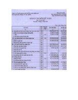 Báo cáo tài chính quý 4 năm 2007 - Công ty Cổ phần Kinh doanh Khí hóa lỏng Miền Nam
