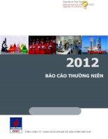 Báo cáo thường niên năm 2012 - Tổng Công ty Dung dịch khoan và Hóa phẩm Dầu khí-CTCP