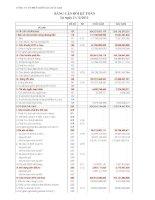 Báo cáo tài chính công ty mẹ quý 4 năm 2010 - Công ty Cổ phần Hồng Hà Việt Nam