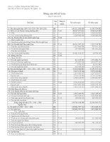Báo cáo tài chính quý 4 năm 2010 - Công ty cổ phần chứng khoán Phương Nam