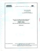 Báo cáo tài chính năm 2010 (đã kiểm toán) - Công ty Cổ phần Chứng khoán PHÚ GIA
