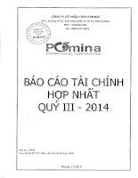 Báo cáo tài chính hợp nhất quý 3 năm 2014 - Công ty Cổ phần Thép Pomina