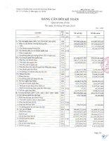 Báo cáo tài chính công ty mẹ quý 3 năm 2010 - Công ty Cổ phần Kinh doanh Khí hóa lỏng Miền Nam