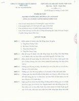 Nghị quyết Đại hội cổ đông bất thường ngày 23-12-2010 - Công ty cổ phần chứng khoán Phương Nam