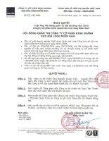 Nghị quyết Hội đồng Quản trị ngày 22-10-2010 - Công ty Cổ phần Kinh doanh Khí hóa lỏng Miền Nam