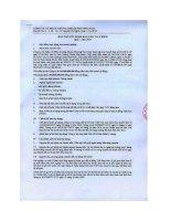 Báo cáo tài chính quý 1 năm 2013 - Công ty cổ phần chứng khoán Phương Nam