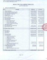 Báo cáo tài chính quý 2 năm 2009 - Công ty Cổ phần Kinh doanh Khí hóa lỏng Miền Nam