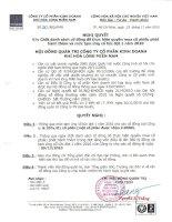 Nghị quyết Hội đồng Quản trị ngày 23-11-2010 - Công ty Cổ phần Kinh doanh Khí hóa lỏng Miền Nam