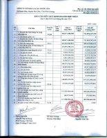 Báo cáo KQKD quý 2 năm 2010 - Công ty cổ phần Cao su Phước Hòa