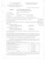 Báo cáo tài chính hợp nhất quý 2 năm 2014 - Công ty Cổ phần Hồng Hà Việt Nam