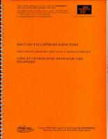 Báo cáo tài chính năm 2010 (đã kiểm toán) - Công ty Cổ phần Dược phẩm Dược liệu Pharmedic