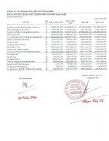 Báo cáo KQKD hợp nhất quý 4 năm 2010 - Công ty Cổ phần Văn hóa Phương Nam