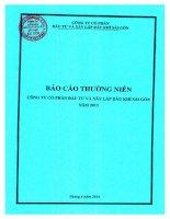 Báo cáo thường niên năm 2013 - Công ty Cổ phần Đầu tư và Xây lắp Dầu khí Sài Gòn