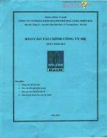 Báo cáo tài chính công ty mẹ quý 2 năm 2013 - Công ty Cổ phần Kinh doanh Khí hóa lỏng Miền Bắc