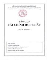 Báo cáo tài chính hợp nhất quý 2 năm 2013 - Công ty Cổ phần Luyện kim Phú Thịnh