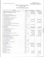 Báo cáo tài chính quý 2 năm 2008 - CTCP Đầu tư Điện lực 3
