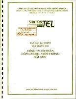 Báo cáo tài chính công ty mẹ quý 2 năm 2011 - Công ty Cổ phần Công nghệ Viễn thông Sài Gòn