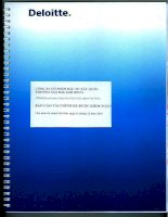 Báo cáo tài chính năm 2015 (đã kiểm toán) - Công ty cổ phần Đầu tư Xây dựng Thương mại Dầu khí-IDICO