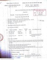 Báo cáo tình hình quản trị công ty - Công ty Cổ phần Sông Đà 9.06