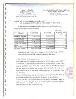 Báo cáo tài chính quý 4 năm 2012 - Công ty Cổ phần Quốc tế Hoàng Gia